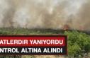 Karakoçan'daki Yangın Kontrol Altına Alındı
