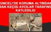 Koruma Altındaki Yaban Keçisi Avcılar Tarafından Katledildi