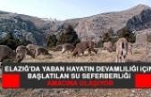 Elazığ'da Yaban Hayatın Devamlılığı İçin Başlatılan Su Seferberliği Amacına Ulaşıyor