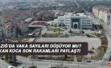 Elazığ'da vaka sayıları düşüyor mu? Bakan Koca son rakamları paylaştı