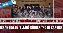 """MERAK EDİLEN """"ELAZIĞ GÜNLERİ""""NDEN KARELER…"""