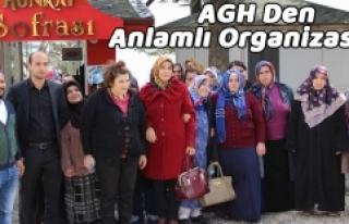 AGH Den Anlamlı Organizasyon