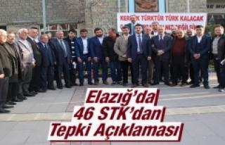 Elazığ'da 46 STK'dan Tepki Açıklaması