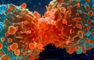 Omurga-Omurilik Tümörlerinde Erken Tanı Hayat Kurtarıyor