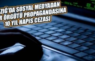 Terör Örgütü Propagandasına 10 Yıl Hapis Cezası