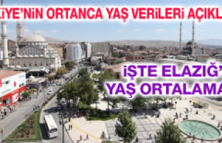 Türkiye'nin En Genç Şehirleri