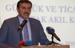 Bakan Tüfenkci: İlk Gümrük Ve Ticaret Merkezi...
