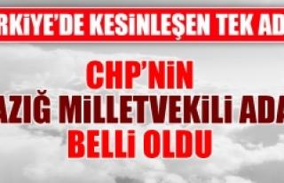 CHP'nin Elazığ Milletvekili Adayı Belli Oldu