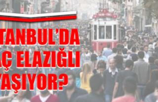 İşte İstanbul'da Yaşayan Elazığlı Sayısı