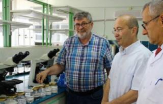 Türk Bilim İnsanları, Bor Kullanarak Plastiği...