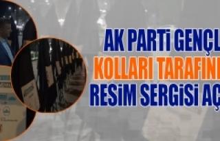 AK Parti Gençlik Kolları Tarafından Resim Sergisi...