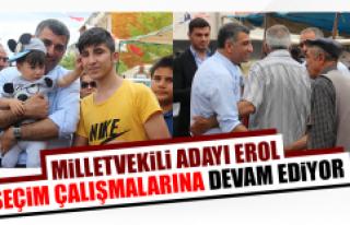 CHP Milletvekili Adayı Erol, Seçim Çalışmalarına...