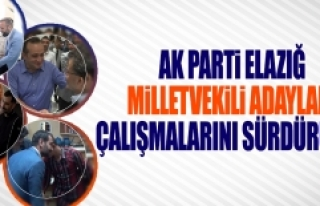 Seçime 12 Gün Kala AK Parti Adayları Çalışmalarını...