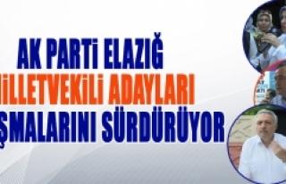 Seçime 1 Gün Kala AK Parti Adayları Çalışmalarını...