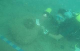 Antalya'da 2 Bin Yıllık Gemi Batığı Bulundu