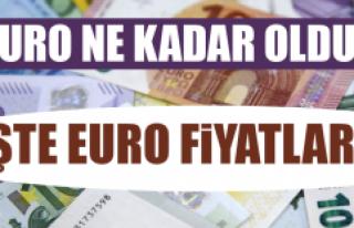 12 Eylül Euro Fiyatları