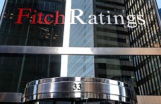 Fitch Ratings, Türkiye'den 4 Bankanın Kredi...