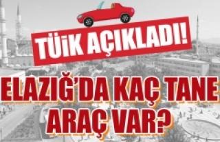 Temmuz Ayı Elazığ'ın Araç Sayısı Belli...