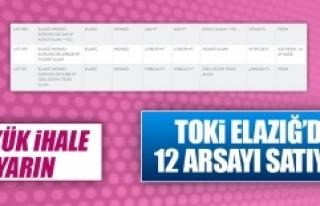 TOKİ Elazığ'da 12 Arsayı Satışa Çıkartıyor