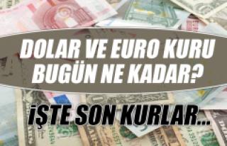 25 Ekim Dolar ve Euro Fiyatları