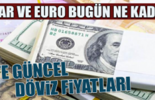 31 Ekim Dolar ve Euro Fiyatları