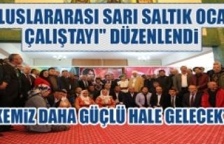 """Tunceli'de """"Uluslararası Sarı Saltık Ocağı..."""