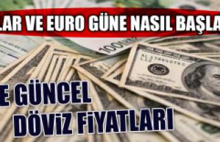 12 Kasım Dolar ve Euro Fiyatları
