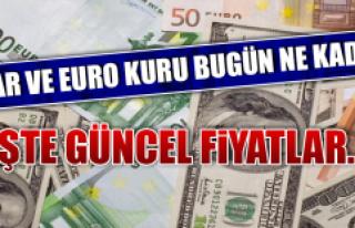 1 Kasım Dolar ve Euro Fiyatları