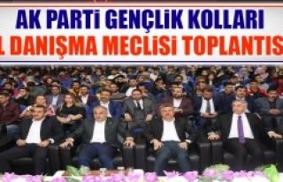 AK Parti Gençlik Kolları İl Danışma Meclisi Toplantısı...