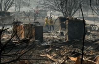 California'daki yangın felaketinde ölü sayısı...