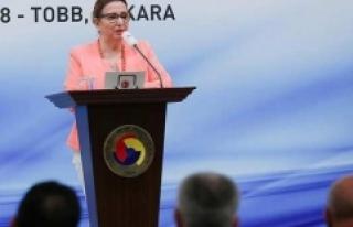 Ticaret Bakanı Pekcan: İlk aşamada 16 ilde, 25...