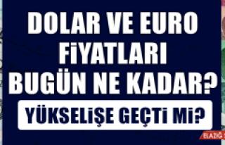 18 Ocak Dolar ve Euro Fiyatları