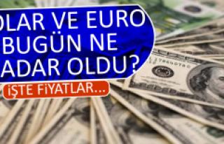 13 Şubat Dolar ve Euro Fiyatları