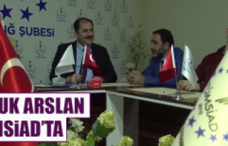 Haluk Arslan, TÜMSİAD'ta