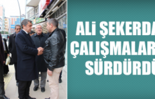 Ali Şekerdağ, Çalışmalarını Sürdürdü