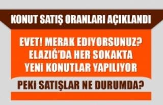 Elazığ'ın Mart Ayı Konut Satış Oranları...