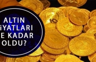 18 Mayıs Altın Fiyatı