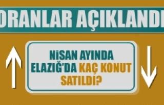 Elazığ'da Konut Satışlarında Son Durum Ne?