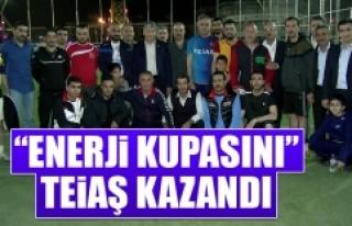 """""""Enerji Kupasını"""" TEİAŞ Kazandı"""