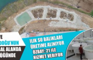ILIK SU BALIKLARI ÜRETİME ALINIYOR