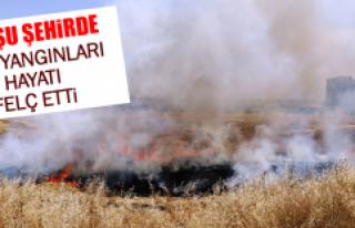 Komşu Şehirde Anız Yangınları Hayatı Felç Etti