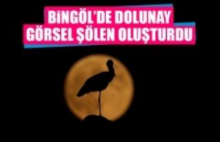 Bingöl'de Dolunay