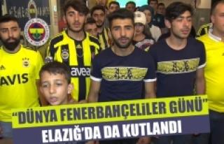 """""""Dünya Fenerbahçeliler Günü"""" Elazığ'da..."""