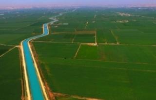 GAP ile Harran Ovası'nın ekonomiye katkısı...