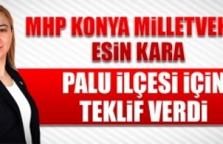 Konya Milletvekili Esin Kara'dan Palu İçin Teklif