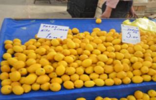 Pazar Tezgahların da Limon Zam Şampiyonu