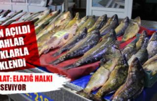 Sezon Açıldı, Tezgahlar Balıklarla Renklendi