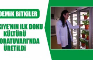 Türkiye'nin İlk Doku Kültürü Laboratuvarı'nda...