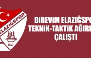Birevim Elazığspor, Teknik-Taktik Ağırlıklı...