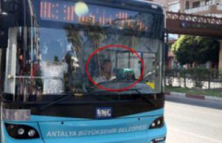 Engelli kedilerle otobüs şoförlüğü yapıyor